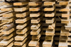 Stacked wooden logs Royalty Free Stock Images