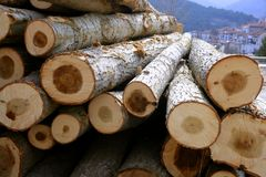 Stacked wooden logs, tree trunks. Stacked logs for winter firewood in typical village from Spain Stock Photos