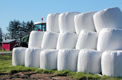 Stacked and Wrapped Hay Bales Stock Photography