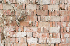 STACKING BRICKS. TEXTURES OF STACKING BRICKS WITH DRIED PLANTINGS DROPPING IN FRONT Stock Photography
