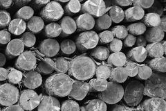 The stacking of logs. After cutting, the logs are stacked, that is, placed in piles, in an open space of the sawmill by a mechanical arm waiting to be used as royalty free stock images