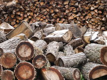 Stacks of chopped logs. Close up of stacks of chopped logs royalty free stock images