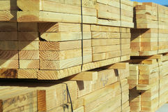 Stacks of Construction Wood Stock Photo