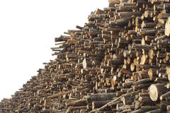 Stacks of cut logs Stock Photos