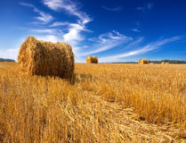 Stacks in the field.Landscape in a sunny day Stock Images
