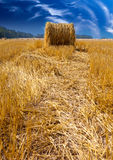 Stacks in the field in a sunny day Royalty Free Stock Photo