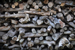 Stacks of firewood. Stock Photos
