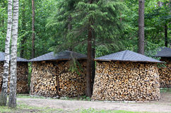 Stacks of firewood. Trim stacks of firewood standing under the trees Royalty Free Stock Photos