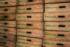 Stacks of Flower Crates Stock Image