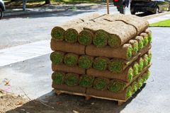 Stacks of sod rolls for new lawn. Stacks Grass turf in rolls ready to be used for gardening or landscaping of sod rolls for new lawn royalty free stock images