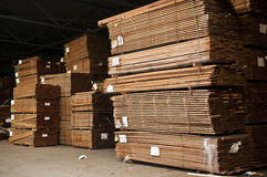 Stacks of hardwood. Tacks of a hardwood in lumber warehouse ready for transportation Stock Photo