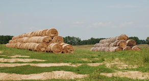 Stacks of Hay Bales Stock Images