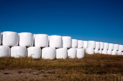 Stacks of hay bales wrapped in plastic Royalty Free Stock Photos