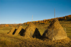 Stacks of hay. Beautiful fall landscape Royalty Free Stock Photography