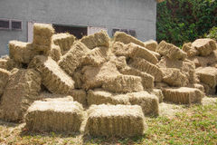 Stacks of hay Stock Photography