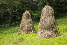 Stacks of hay Royalty Free Stock Photo