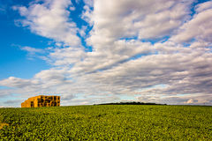 Stacks of hay in a farm field in rural York County, Pennsylvania Royalty Free Stock Photos