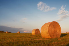 Stacks In The Field Royalty Free Stock Photo