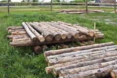 Stacks of logs Royalty Free Stock Image