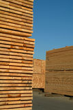 Stacks of lumber. In yard Royalty Free Stock Photo