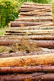Stacks of lumber Royalty Free Stock Photos