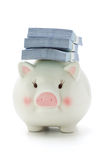Stacks of money on back of Piggy bank Stock Images