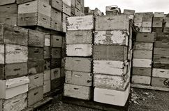 Stacks of old bee hive boxes Stock Photography