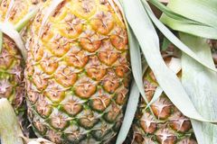 Stacks of pineapple,asia royalty free stock image