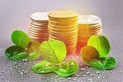 Stacks of Russian coins with clover leaves on a gray background with droplets of water. St.Patrick's Day. Stacks of Russian coins with clover leaves on a gray royalty free stock images