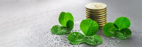 Stacks of Russian coins with clover leaves on a gray background with droplets of water. St.Patrick's Day. Stacks of Russian coins with clover leaves on a gray royalty free stock photo
