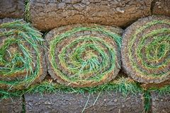 Stacks of sod rolls for new lawn. Background royalty free stock image