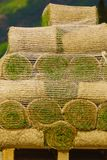 Stacks of sod rolls for new lawn. Natural grass turf for installing making new field stock photos