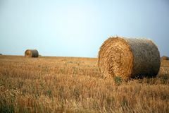 Stacks of straw Stock Photo