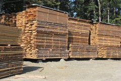 Stacks of timber planks. Orderly stacks of timber planks - wood industry Stock Photo