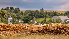 Stacks of Wood Timber Trunks Panorama Royalty Free Stock Photos