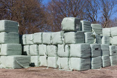 Stacks of Wrapped Silage Bales Stock Images