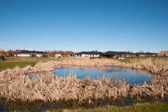 Stad av Nyraad i Danmark Arkivfoto