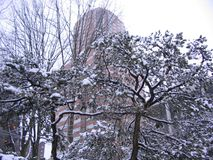Stad in de sneeuw. Royalty-vrije Stock Foto