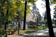Stad en bomen Stock Fotografie
