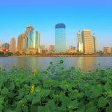 Stad en milieu Royalty-vrije Stock Fotografie