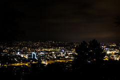 Stad för natt för sikt för trädSilouhette Stuttgart landskap glödande Arkivfoto