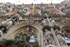 Stad Hall Leuven Royaltyfria Foton