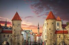 Stad Hall Square av Tallinn Fotografering för Bildbyråer