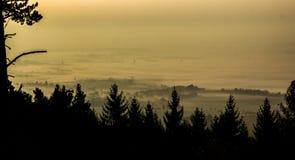 Stad i dimma Fotografering för Bildbyråer