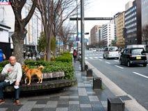 stad japan kyoto Royaltyfria Foton