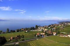 Stad längs sjön, Schweiz Royaltyfria Foton