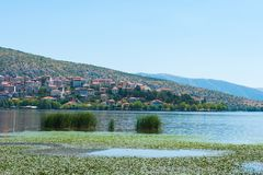 Stad med orange tak vid sjön royaltyfri foto