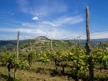 Stad Motovun överst av kullen på Istria Fotografering för Bildbyråer