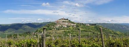 Stad Motovun bovenop de heuvel op Istria Stock Foto