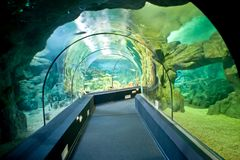 Stad Oceanarium Stad van Sotchi, Adler Microdistrict Binnenlands stock foto